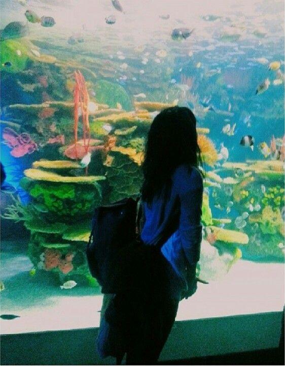 Ripleys Aquarium. #toronto
