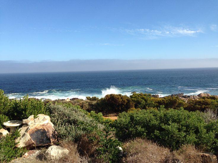 The Point - Pringle Bay - Sanderling