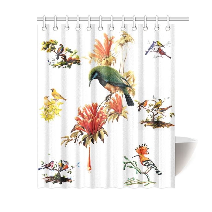 Pretty Bird Shower Curtain 60 Quot X72 Quot For The Home