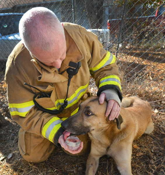 Using CPR and oxygen, firefighters worked for about 30 minutes Thursday to revive a dog named Corky, who they rescued from a burning house in east Fort Worth.