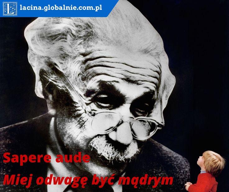 Sapere aude - miej odwagę być mądrym. Sentencje łacińskie filozoficzne. #łacina #sentencje #cytaty #złotemyśli #sentencjełacińskie #einstein http://lacina.globalnie.com.pl/sentencje-lacinskie/