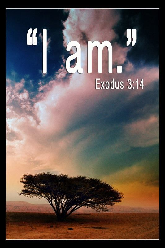 Exodus 3:14 . . . I am that I am . . . God is saying He will be any and every thing we will ever need Him to be in order to fulfill His assignments in our lives.