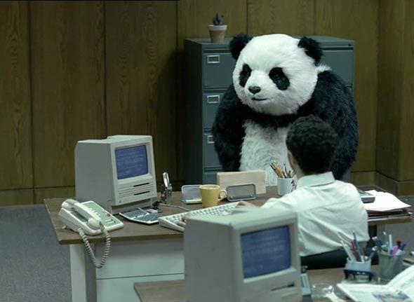 panda 5.