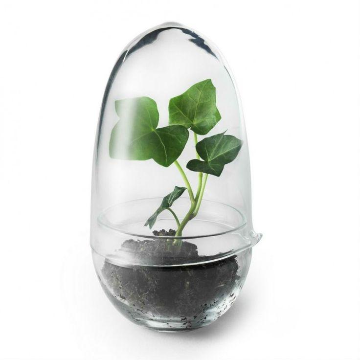 Växthus Grow large