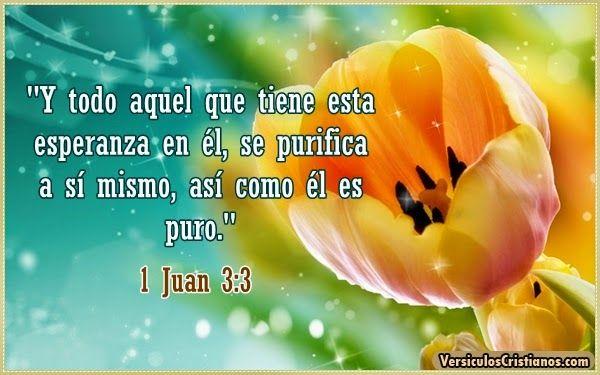 1Juan 3:3