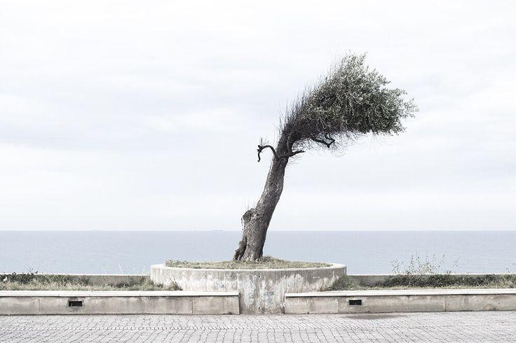 Campo di Mare (BR) Salento 2016