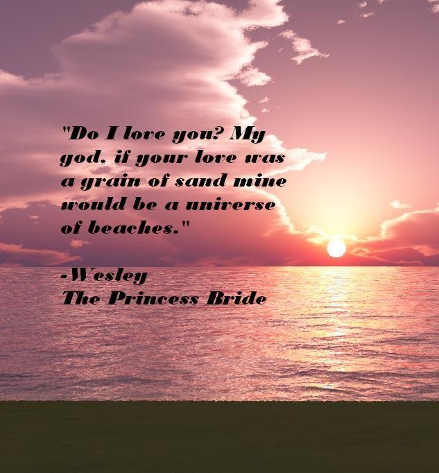 The Princess Bride Quote <3