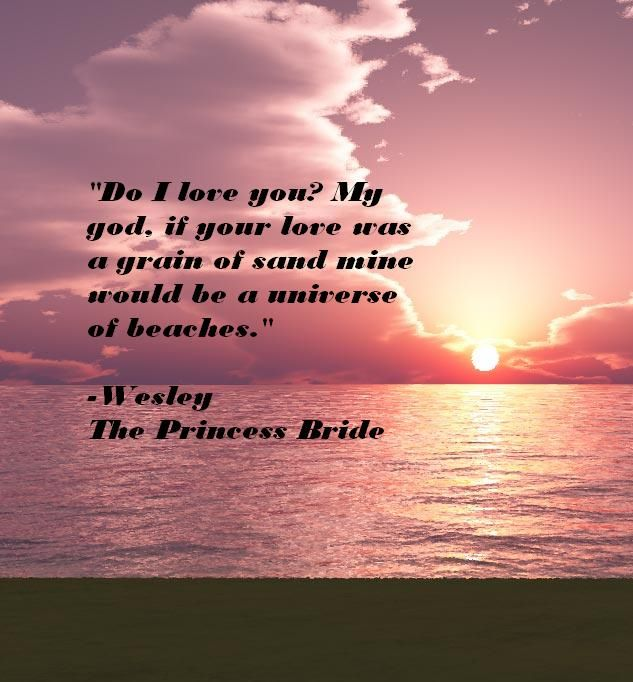 Princess Bride Wedding Quote: Quotes From The Princess Bride. QuotesGram