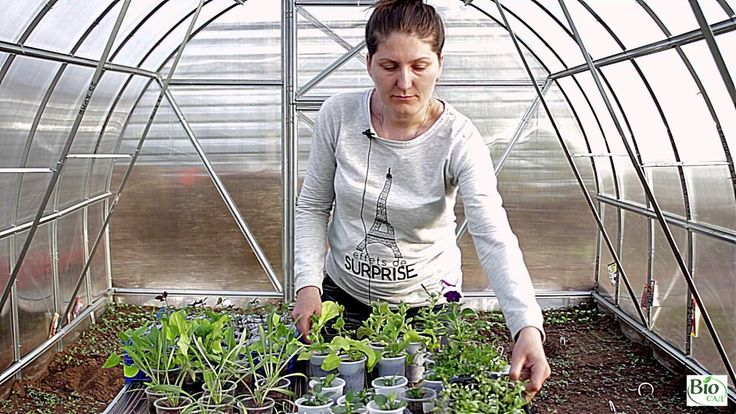 Выращивание цветов - Подводим итоги