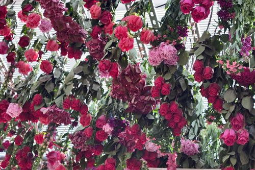 Floral installation by Rebecca Louise Law at Clifton Nurseries in London