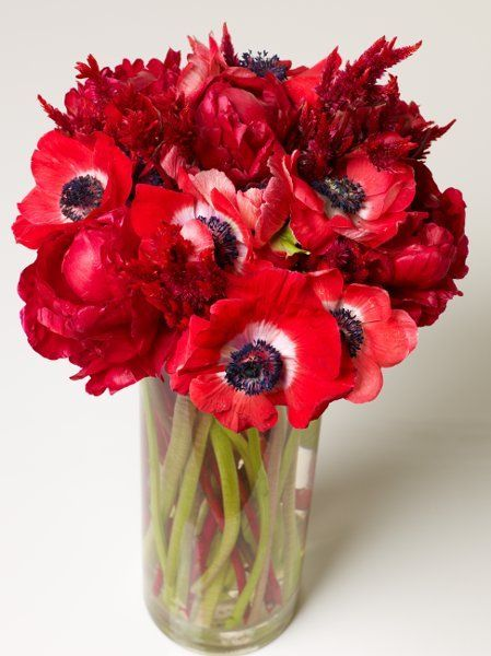 Anemone Flower Arrangements Wedding Flowers Photos on WeddingWire