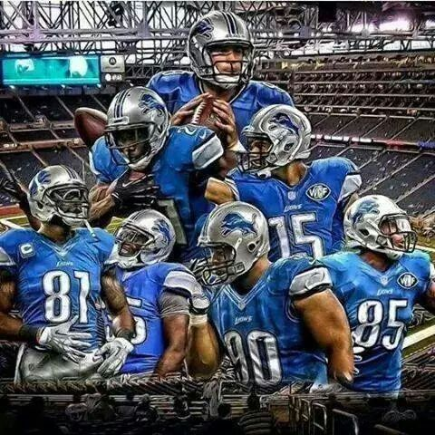 Stafford, Calvin, Tate, Suh ,Ebron, Bush , BELL 2014 lions squad