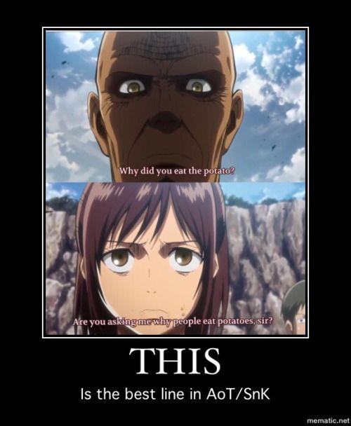 Attack on titan funny memes - Google Search | ATTACK ON TITAN!!! | Pinterest | Attack on Titan ...