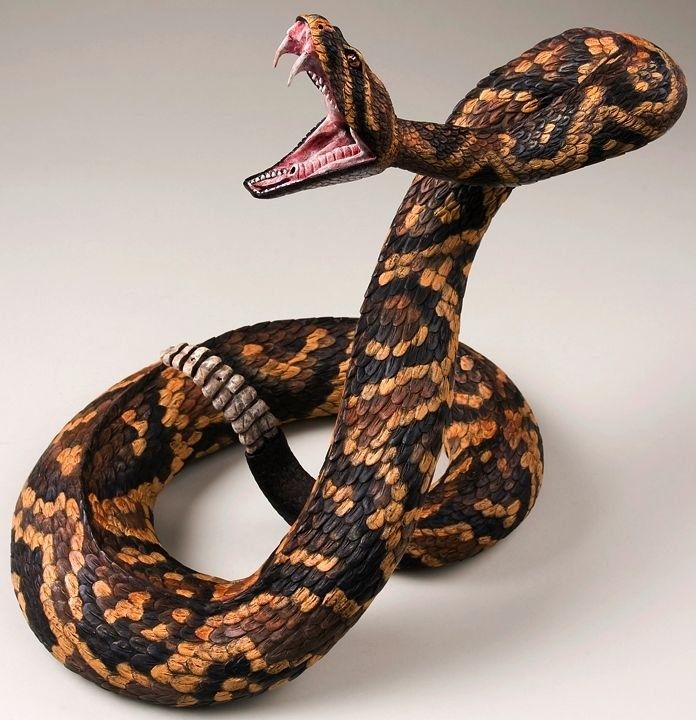 Pyrography snakes and then on pinterest