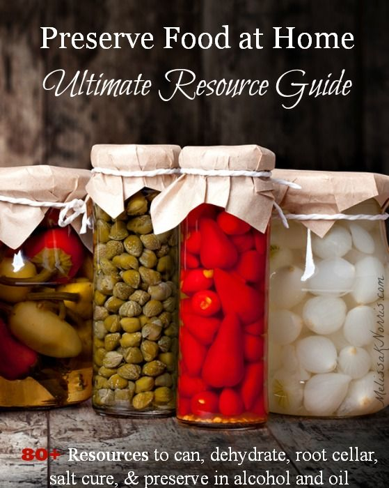 Free resource guide to home food preservation. Over 80+ resources from canning, dehydrating, root cellar, salt curing, and alcohol and oil. Perfect timing for all our summer and fall harvest coming up!