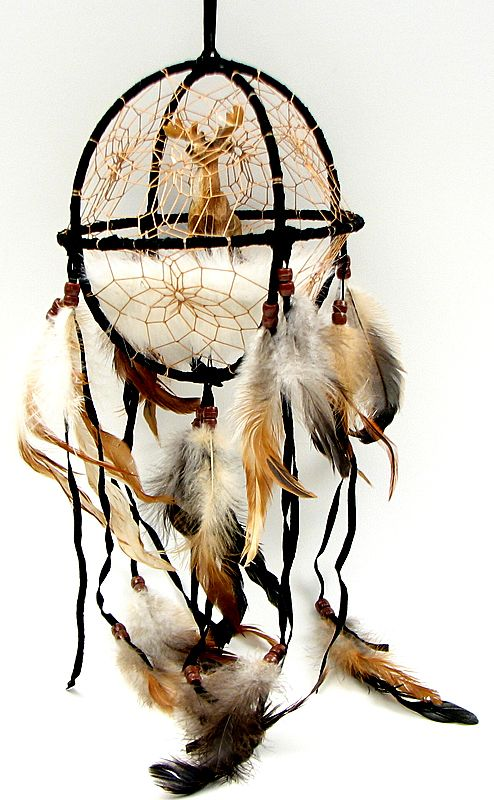 Dream Catcher with something other than a deer. i like the cage though.