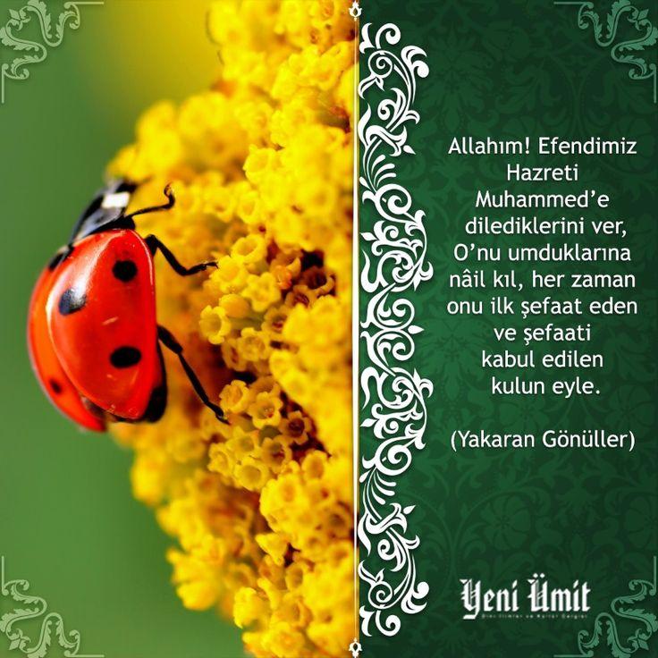 Hayırlı Cumalar... #yeniumit #yeniumitdergi #dua #reca #pray #cuma #friday #islam #iman #hadis #dergi