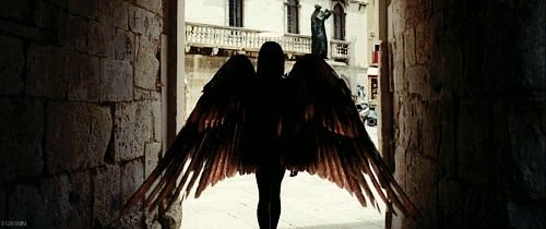 Angel followed (?) out of the dark  walled tunnel. The sun blinded her vision for only a moment then, she saw the pearl white wings glitter in the sunshine. Angel's jaw dropped as the heavenly sight before her spread.
