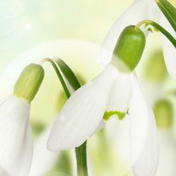 Un gand Gingas si Senin! La multi ani, cu Fericire! http://ofelicitare.ro/felicitari-de-la-multi-ani/un-gand-gingas-si-senin-731.html