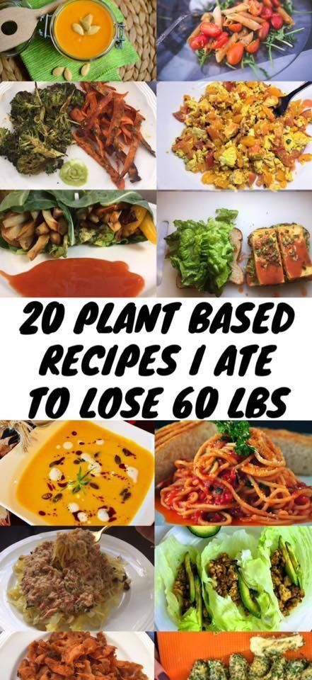 20 Plant Based Recipes I Ate To Lose 60 LBS – Any reason vegans plant based diet, vegan recipes. Hea…