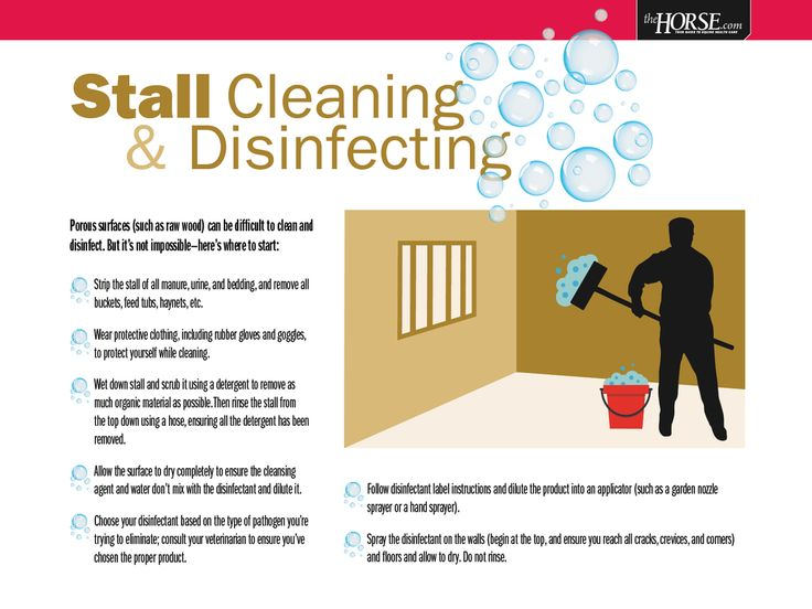 Keeping Your Stalls Clean and Your Horses Healthy