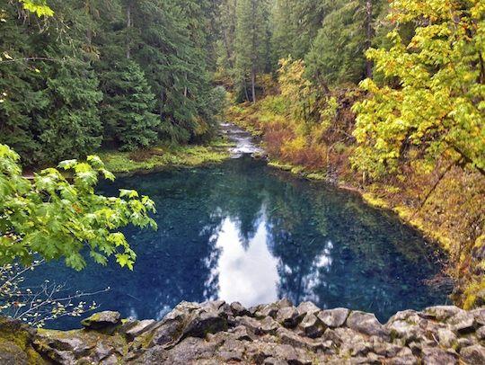 Best 25 Tamolitch Pool Ideas On Pinterest Blue Pool Oregon Blue Pool And Blue River Oregon