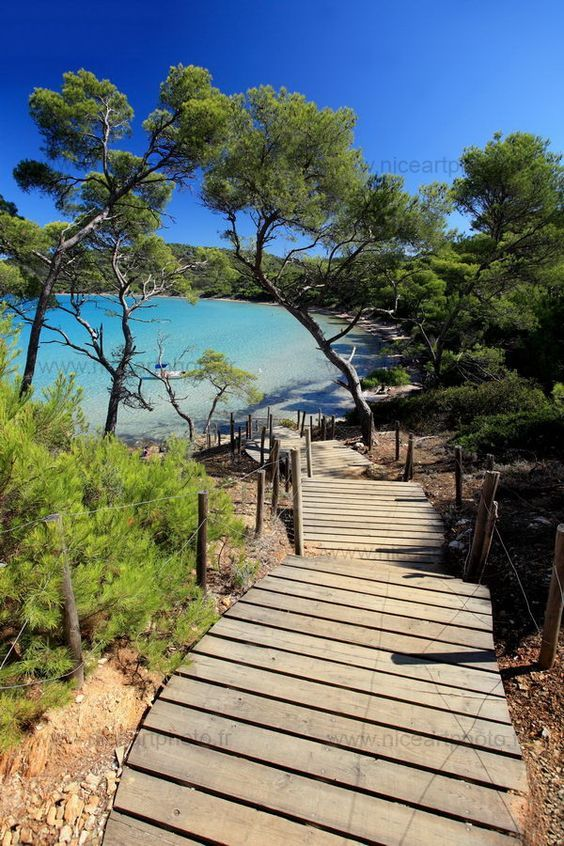 Porquerolles is the largest, most westerly of the three islands in the Îles d'Hyères. It is about 7 km (4.3 miles) long by 3 km (1.9 miles) wide, with five small ranges of hills. The south coast is lined with cliffs, and on the north coast are the port and the beaches of Notre Dame, La Courtade, and Plage d'Argent.