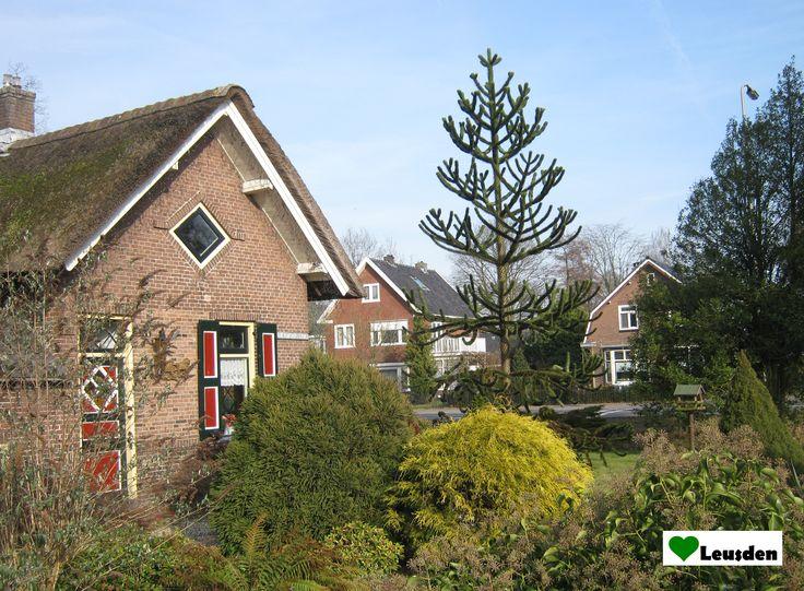 Oude huizen aan de Arnhemseweg in Leusden Zuid