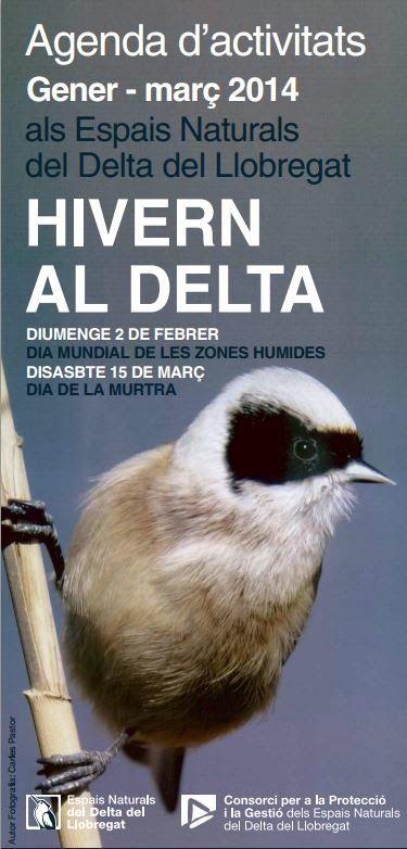 Dia de la Murtra 15 de Marzo Delta del Llobregat