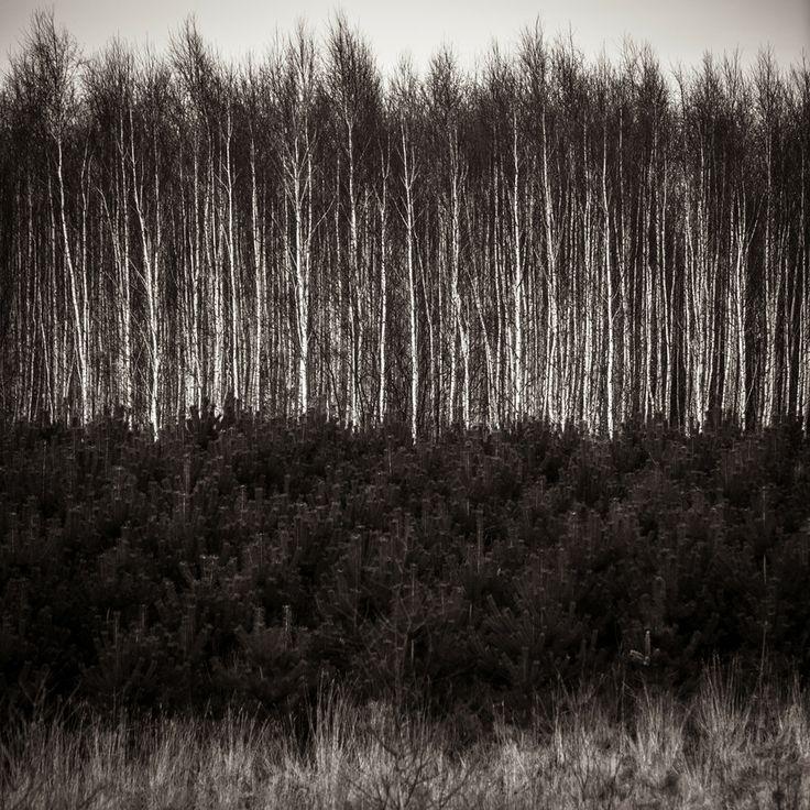 Layers by Robert Manuszewski on 500px