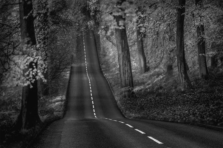 The Road by Tony Dudley on 500px