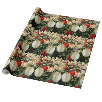 Scarlet and Cream Tulips Spring Birthday Wrapping Paper  $16.70  by mscontrary  - custom gift idea