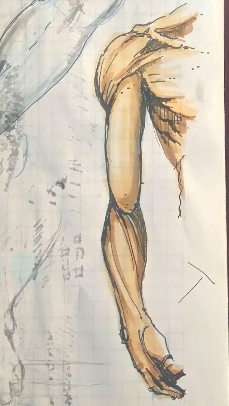 28 best Desenhos - Drawings - Studies images on Pinterest | Drawings ...