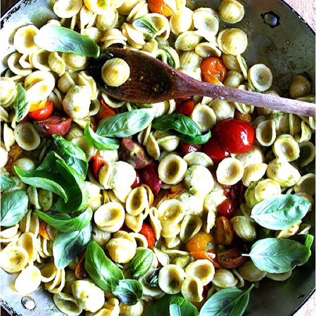 Orchetta pasta salad with fresh tomatoes and basil with a light olive oil, dill, and lemon garlic sauce.