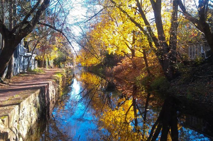 Wander along the sidewalk next to the picturesque canal, a breathtaking sight with meandering lily pads and vibrant trees mirroring off of the water.