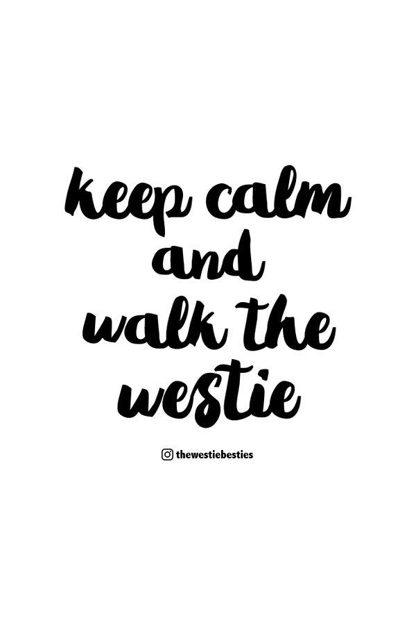 Keep calm and walk the #Westie | The Westie Besties | Follow The Westie Besties on Instagram: http://www.instagram.com/thewestiebesties | #WestHighlandTerrier #Westies #WestHighlandWhiteTerrier #Dogs #Pets #WestieBesties #KeepCalm