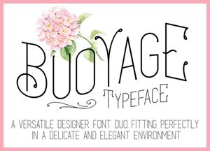 10+ Extremely Professional Fonts Collection of 2018 For All Designers