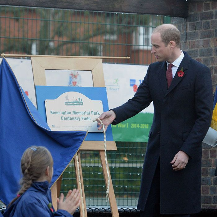 Prince William plants poppy seeds in honor of fallen soldiers and more from the royals around the world