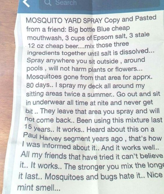 Mosquito Spray - I'm laughing about posting a printed and photographed Facebook post, but this has been pinned THOUSANDS of times with rave reviews. And hey, if you frequently sit in your underwear outside at night then you might want to check this out!