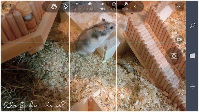 Wie finden wir es ???  : Microsoft Lumia 950 Kamera und Videofunktion