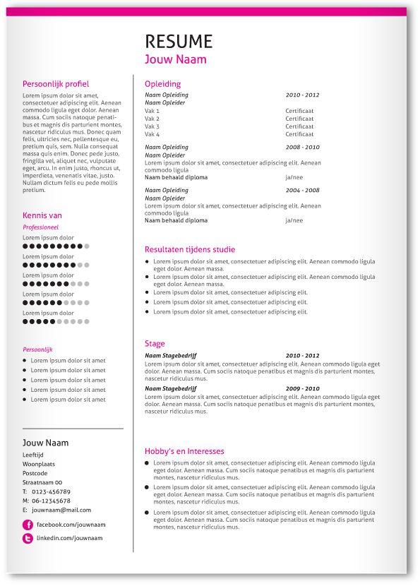 CV design 302. Gebruik dit CV ontwerp om je eigen CV te laten pimpen.