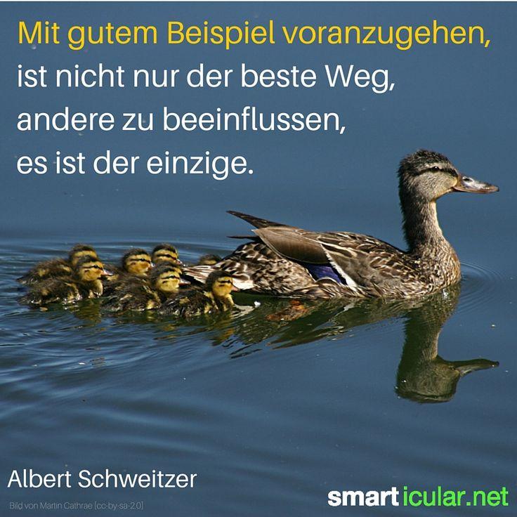 Mit gutem Beispiel voranzugehen, ist nicht nur der beste Weg, andere zu beeinflussen, es ist der einzige. - Albert Schweizer