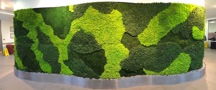 Beautiful New Moss Wall for City of London Client !