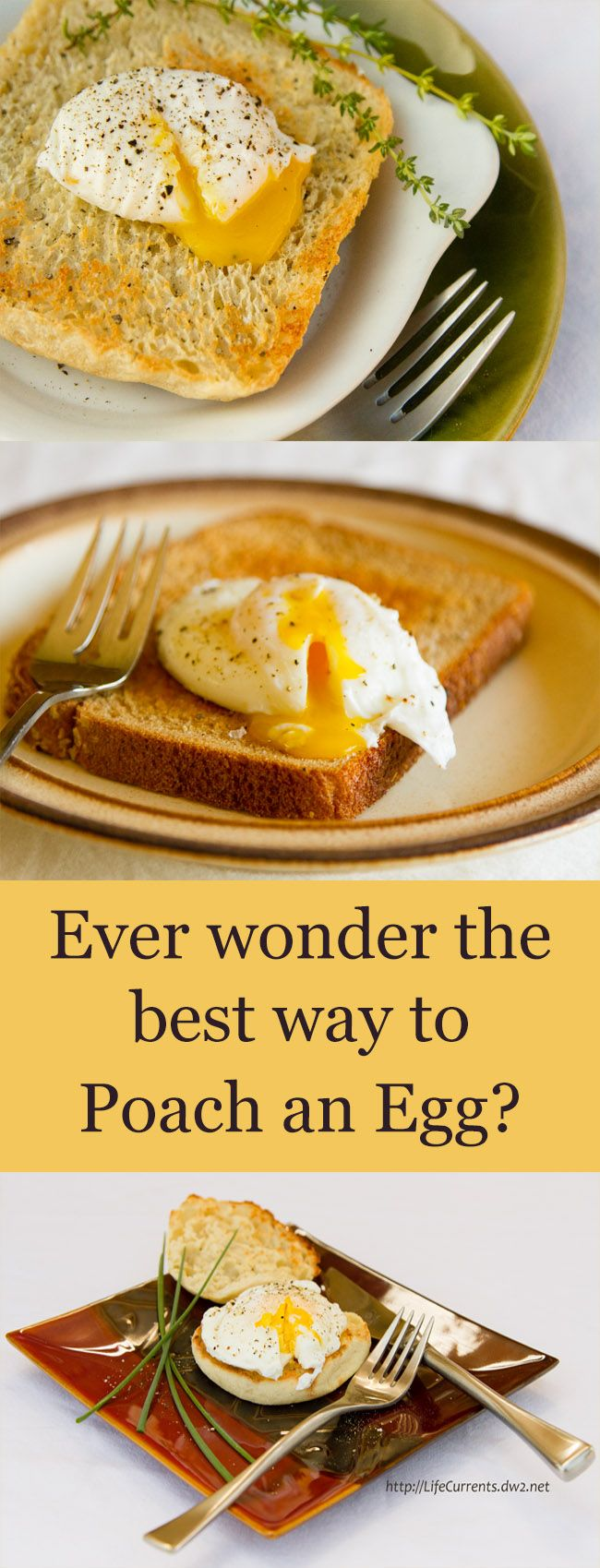 Ever wonder the best way to poach an egg? I tested 5 different methods and review them all for ease, taste, shape, and more. Want to learn more?