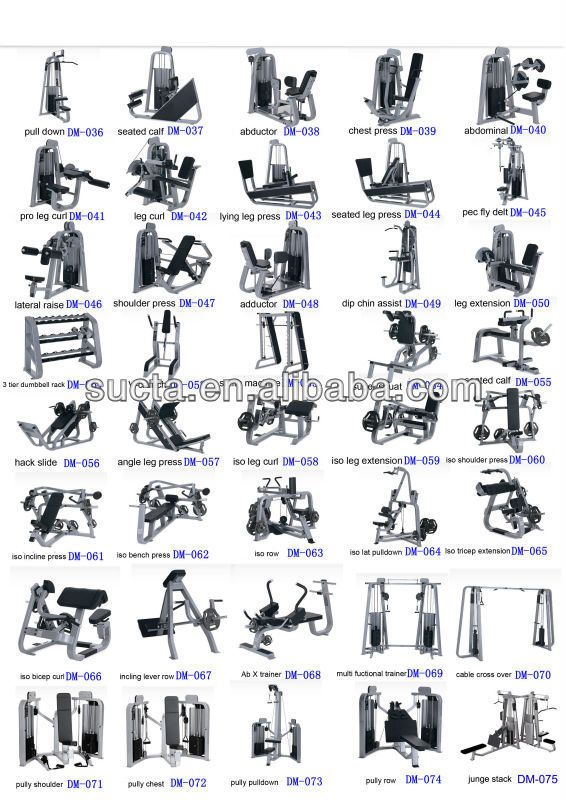 PRONE LEG CURL-fitness gym equipment/home gyms machine/strength fitness machine/bodybuilding equipment/exercise equipment DM-041