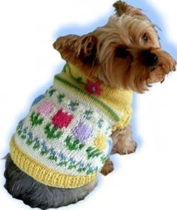19 best Dog sweater patterns images on Pinterest | Dog sweaters ...