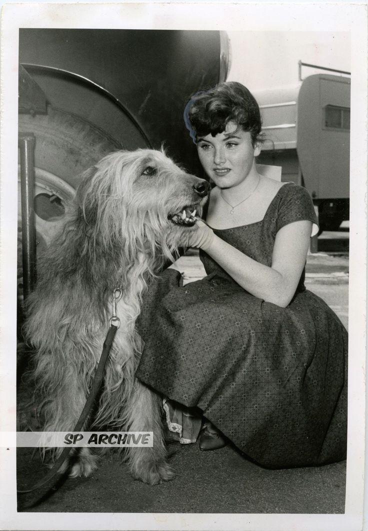 1959 RARE Original Photo ACTRESS NOREEN CORCORAN - BACHELOR FATHER - JASPER DOG