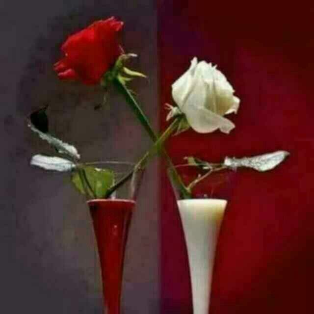 merah putih . south east asian flags colour choosen