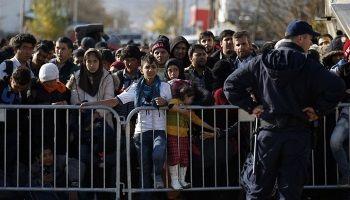 Австрия и Словения закрывают границы   Head News