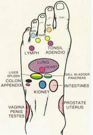 Chart that includes Sexual Reflexology Points